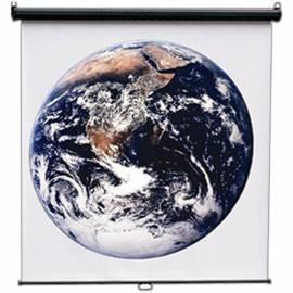 Экран настенный 150*150см ScreenMedia Economy-P MW