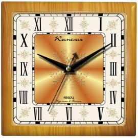 """Часы настенные ход плавный, интерьерные Камелия """"Римские новые 2"""", квадрат, 29*29*3,5, св-кор. рамка"""
