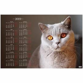 """Календарь настенный листовой А1, OfficeSpace """"Красивый кот"""", 2019г."""