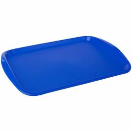 Поднос PlastTeam, прямоугольный, 435*305мм, пластик, синий