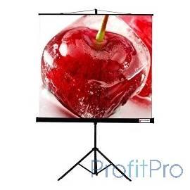 Viewscreen Clamp TCL-1102 Экран мобильный (1:1) 180*180 MW