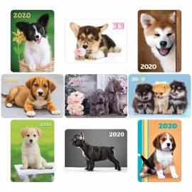 """Календарь карманный Hatber """"Собаки"""", глянцевая ламинация, 2020г"""